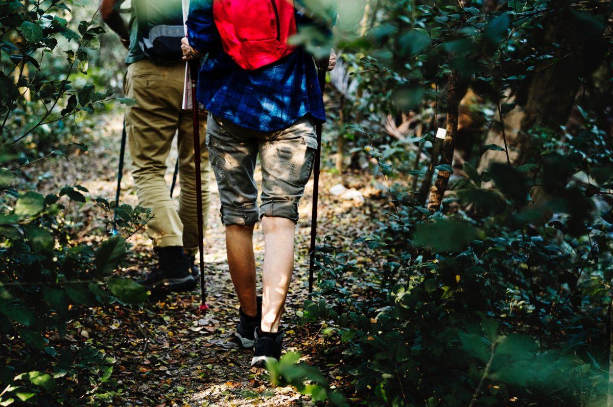 I vantaggi di utilizzare i bastoncini per la camminata